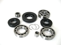Front Differential Bearings and Seals Kit TRX350FM Fourtrax Rancher 2000-2006