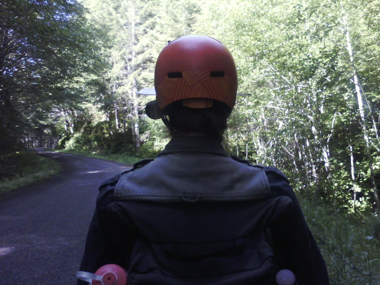 View of the back of a helmeted head on a tandem bicycle in a forest
