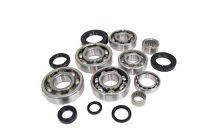 Complete Engine Bottom End Bearings and Seals Kit Honda CR450R 1981