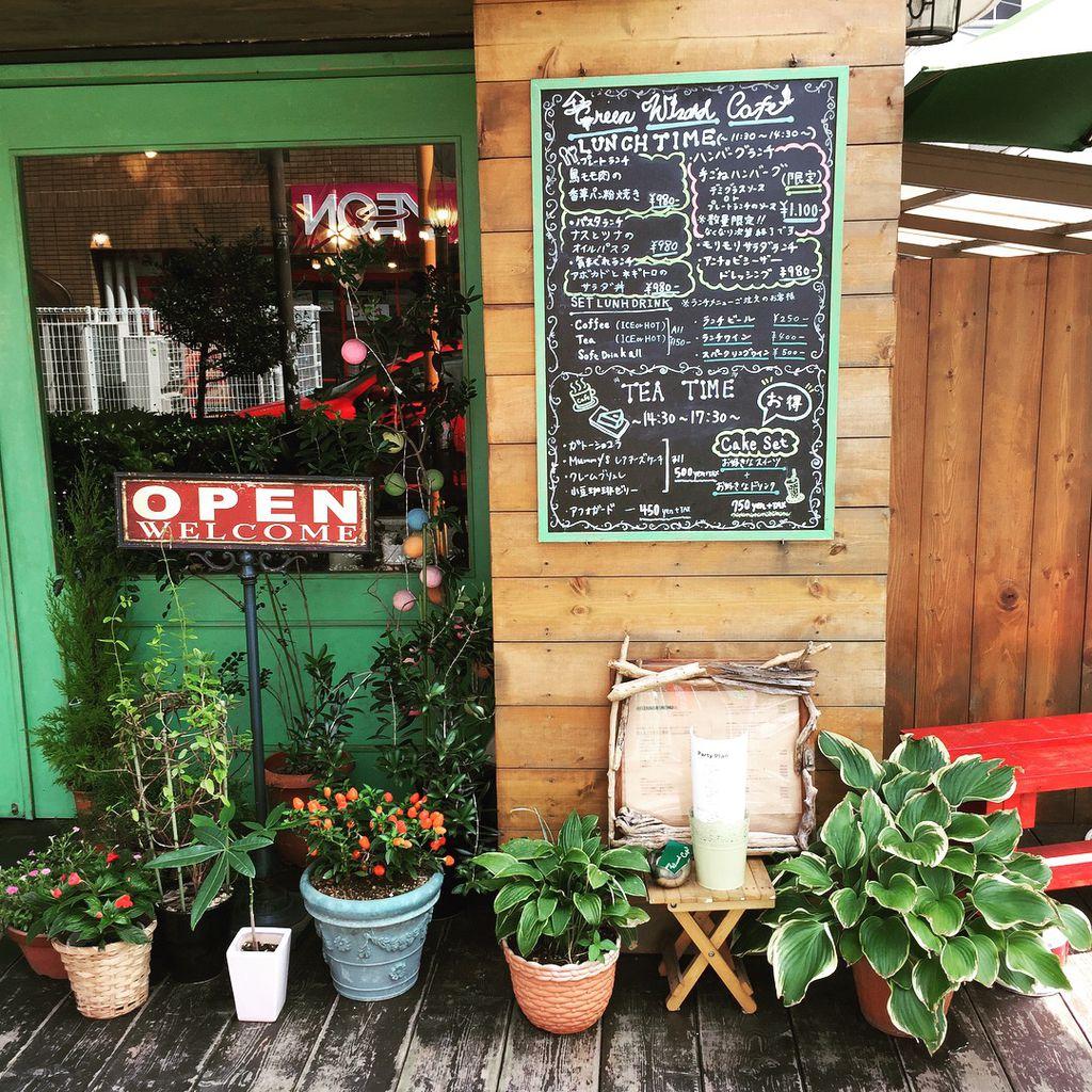 入り口には植物が飾られている