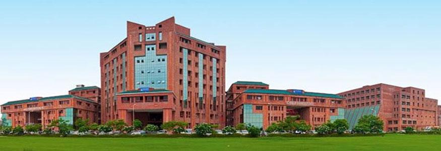 School of Creative Art, Design and Media Studies, Sharda University Image