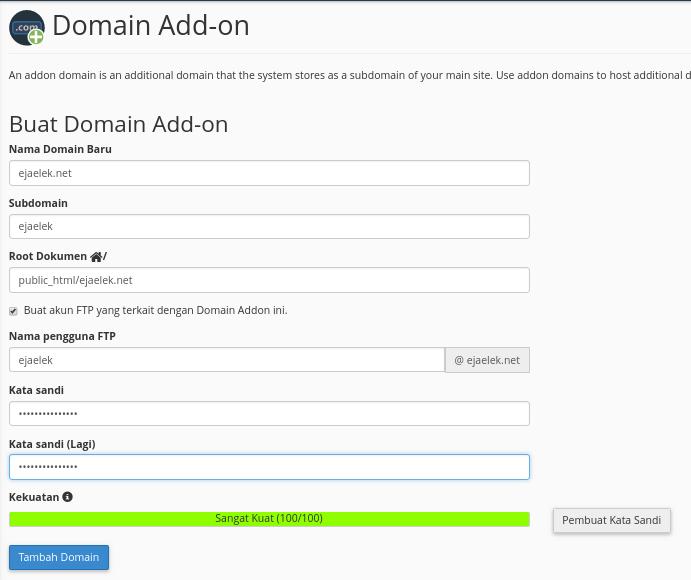 Form penambahan domain