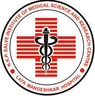 N. K. P. Salve Institute of Medical Sciences and Research Centre and Lata Mangeshkar Hospital, Nagpur