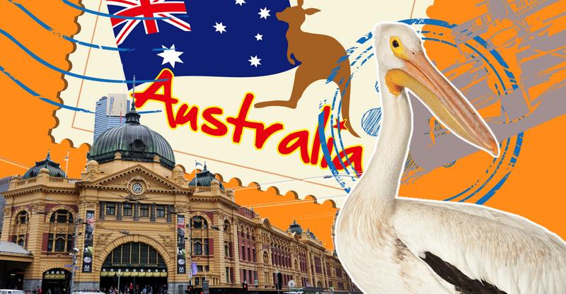Один мой день в Мельбурне накануне локдауна: пустые улицы, пеликан на пляже и отмена Формулы 1