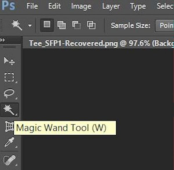 Using the Magic Wand to select the 2D template from the image