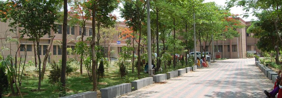 Km. Mayawati Government Girls P.G. College, Gautam Budh Nagar Image
