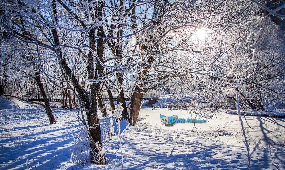 настоящая зима, как же мы соскучились по ней, хотим снежок и морозик по утрам, это так бодрит!