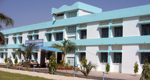 College of Fisheries, G.B. Pant University of Agriculture and Technology, Udham Singh Nagar