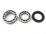 Rear Axle Bearings and Seal Kit Yamaha Big Bear YFM350FW 1987-1995