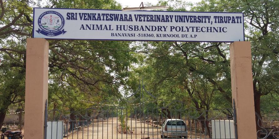 Animal Husbandry Polytechnic College, Banavasi