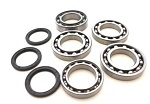 Boss Bearing 41-4292B-9D4 Front Differential Bearings and Seals Kit Polaris R...