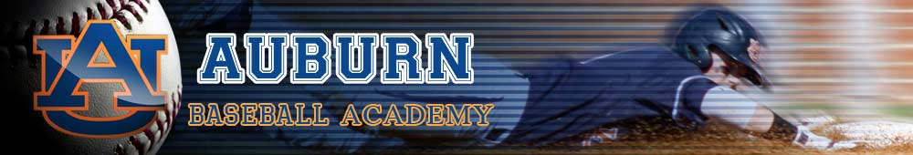 Auburn University Baseball Camps