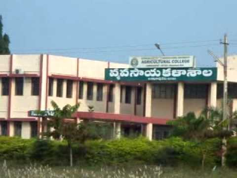 Agricultural College, Aswaraopet Image