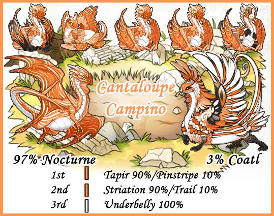 Cantaloupe%20Campino.png