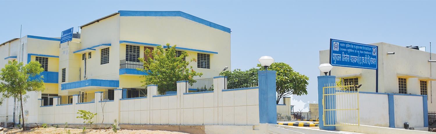 College of Veterinary and Animal Science, Udaipur Image