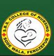 Shaheed Bhagat Singh College Of Nursing, Firozpur