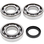 Main Crank Shaft Bearings and Seal Kit - 24-1076B - Boss Bearing