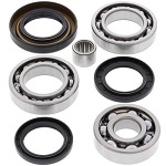 Rear Differential Bearings Seals Kit Honda TRX250 Fourtrax 2x4 1985 1986 1987