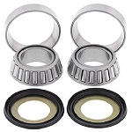 Steering Stem Bearings and Seals Kit