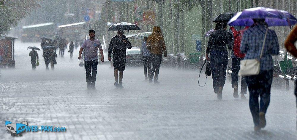 Снова дожди и весна пришла к нам, похолодало!
