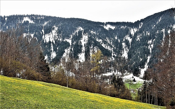 Wirtschaftswald Kristbergsattel