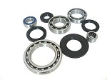 Rear Differential Bearings and Seals Kit Arctic Cat 400 2x4 1998-2001