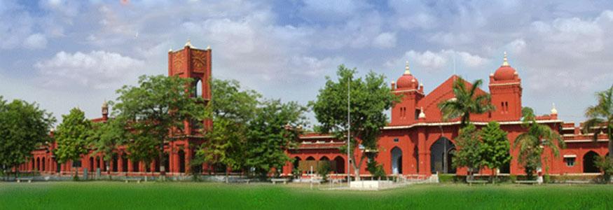 Bareilly College
