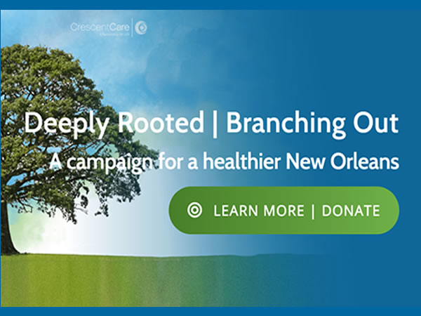 Deeply Rooted Branching Out