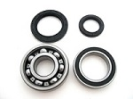 Rear Wheel Bearings and Seals Kit Yamaha YFM350FX Wolverine 350 4x4 - 25-1018B