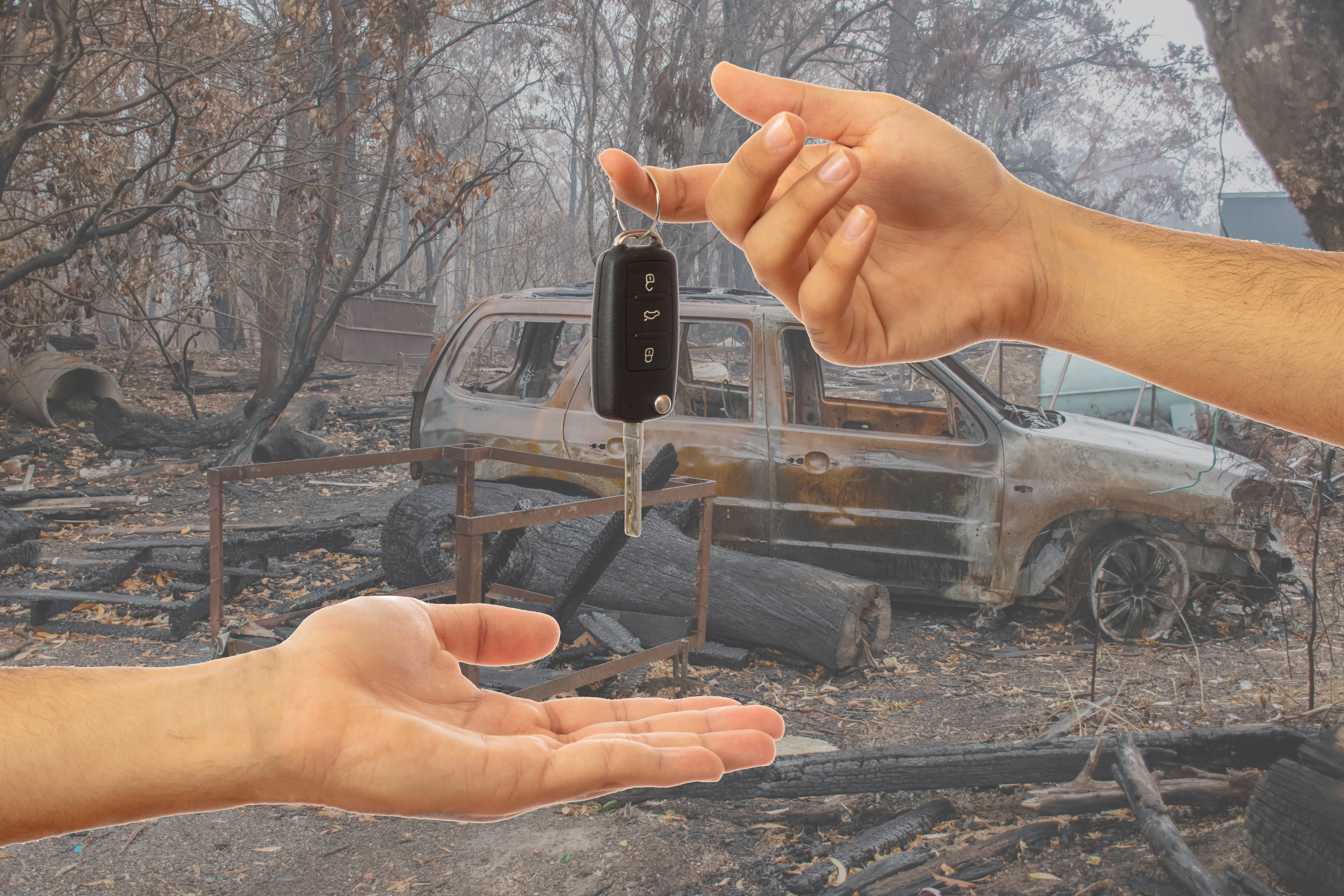 IDOM Bushfire Release