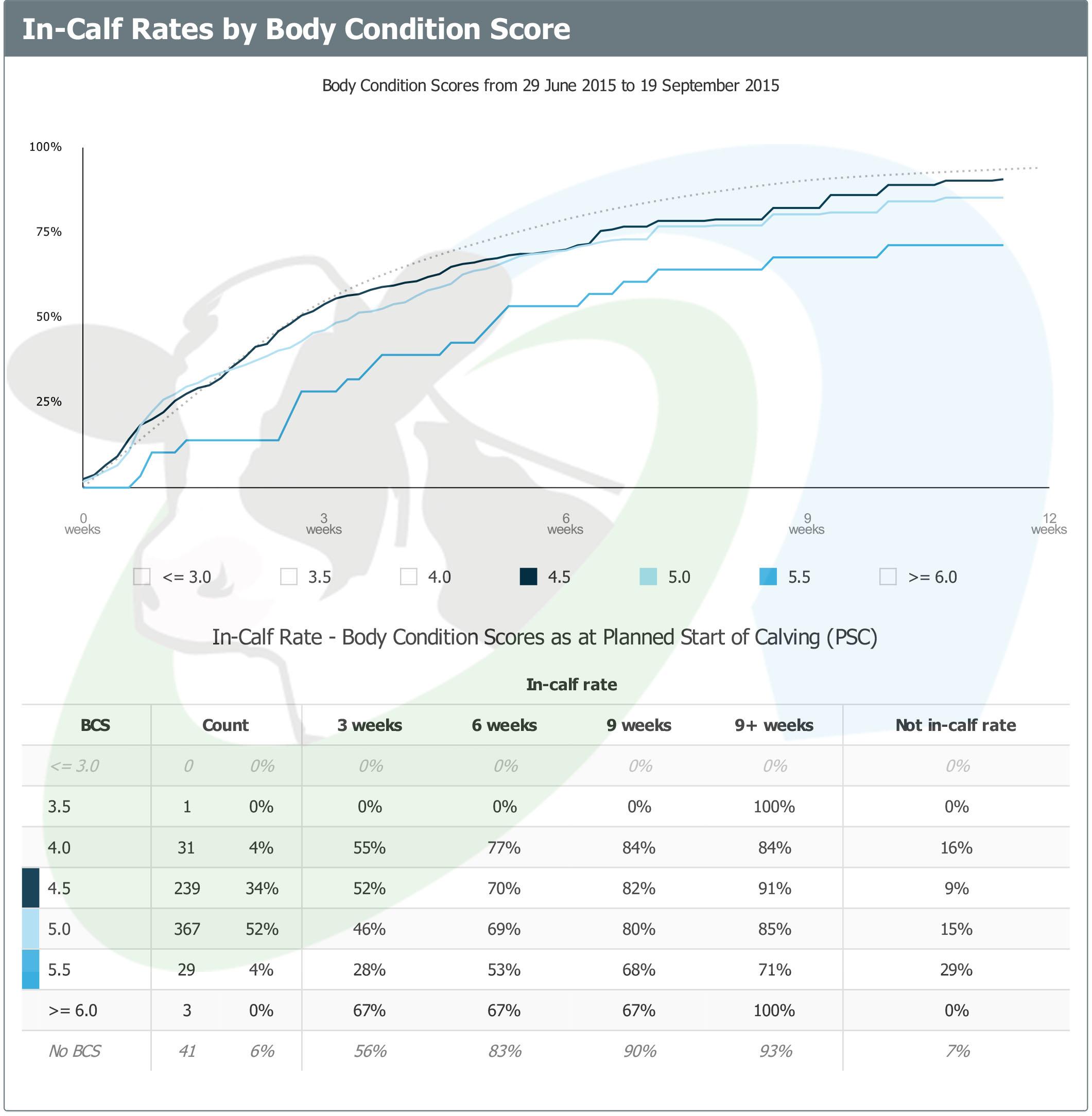 SDF ICR by BCS pre calving