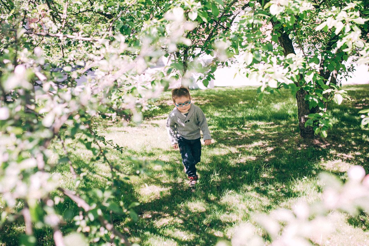 Бегущий ребенок в яблонях - семейная фотосессия в яблонях Северодвинск свадебный фотограф Архангельска