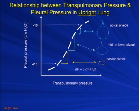 Courtesy of Jaeger, JM (University of Virginia) at https://dl.dropboxusercontent.com/s/yas0xemlu6xyu7e/Lung%20compliance%20Measurement.png