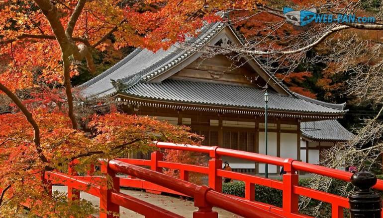 Осень в Белоруссии и на островах Японии, красные листы...