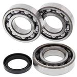 Main Crank Shaft Bearings and Seal Kit Polaris - 24-1089B - Boss Bearing