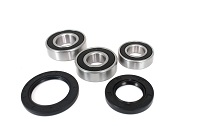 Rear Wheel Bearings and Seals Kit Yamaha FZ07 FZ-07 2015