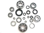 Bottom End Bearings and Seals Kit Honda CR250R 1985-1987 Engine