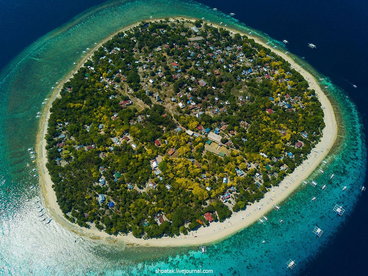 2019. Филиппины. Остров Баликасаг. Джеки и черепахи.