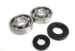Main Crank Shaft Bearings and Seals Kit Yamaha YZ250 - 24-1029B