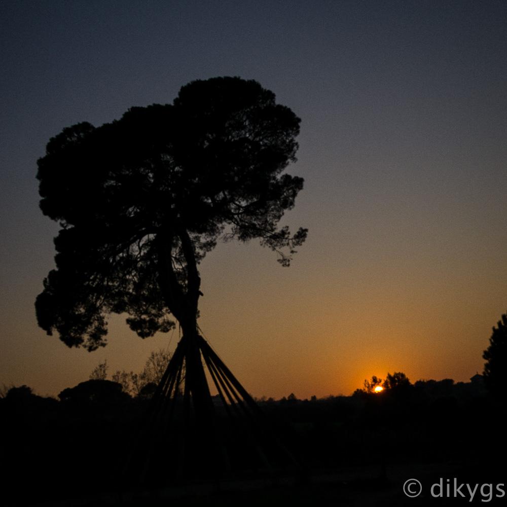 Anocheciendo sobre el Pi d'en Xandri