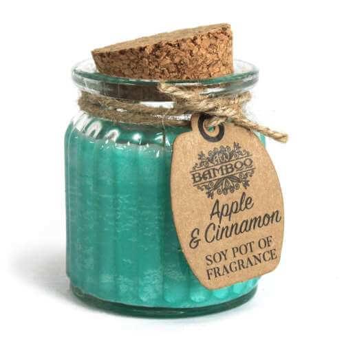 2x soy wax candle pot - apple & cinnamon