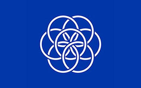 Bandera de la tierra