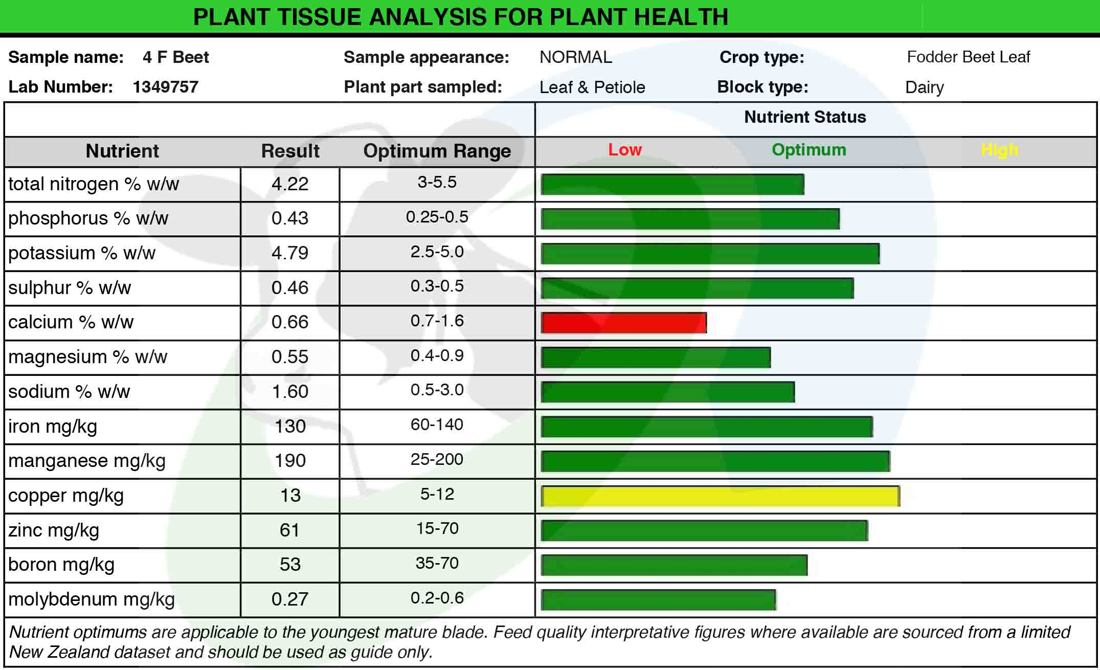 SDF Beet Leaf Analysis2
