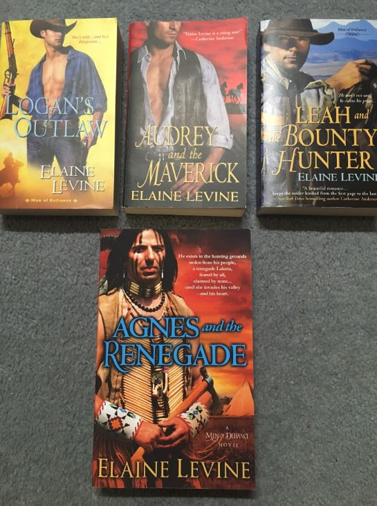 Elaine Levine Men of Defiance book swag