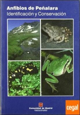 Anfibios de Peñalara . identificación y conservación