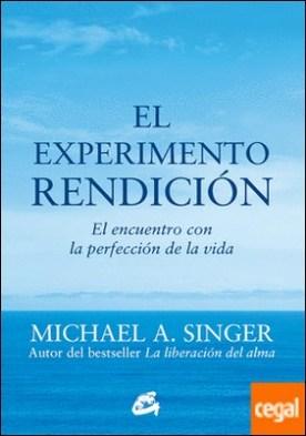 El experimento rendición . El encuentro con la perfección de la vida