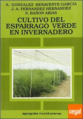 El cultivo del espárrago verde en invernadero