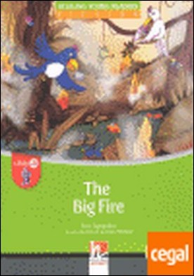 THE BIG FIRE + CD LEVEL A