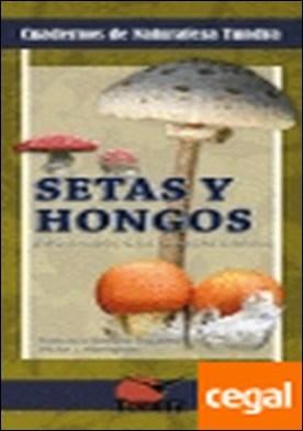 Setas y hongos . introducción a las especies ibéricas