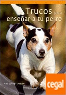 Trucos para enseñar a tu perro
